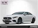 2019 Mercedes-Benz CLS CLS 450 SECURITY SYSTEM TIRE PRESSURE